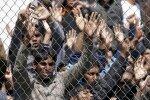 8 Syryjczyków przesiedlono na Litwę