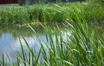 В Вильнюсском районе утонула девочка