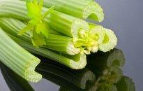 Невероятные полезные свойства сельдерея