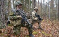 Грибаускайте: учения НАТО в Литве – часть плана сдерживания