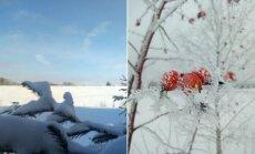 Nuostabi žiema Aukštaitijoje