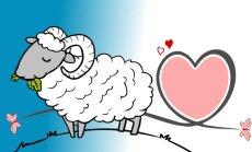 Kaip meilės ieško skirtingi  Zodiako ženklai