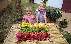 Po pasaulį keliaujanti šeima – apie tradicines šventes toli nuo Lietuvos