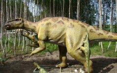 Lietuviškasis dinozaurų parkas tikisi sulaukti ne tik vaikų dėmesio Pamatyk nuotraukas