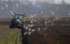 Литовские поля пашут украинцы