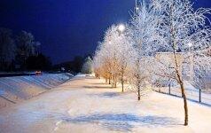 Глобальное потепление принесет Европе раннюю и холодную зиму