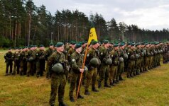 В Литве на пять лет продлен срок службы профессиональных военных
