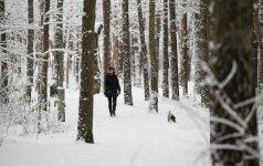 Погода: будет становится холоднее, но мороз не задержится