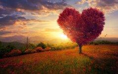 Ir amžinai įsimylėjusiems, ir meile netikintiems