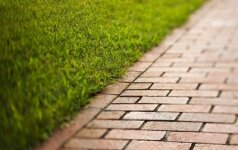 Появился новый налог: измеряют высоту травы