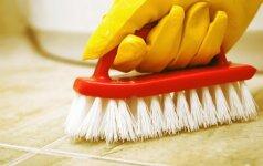 Kaip namų priemonėmis išvalyti plyteles, veidrodžius, iššveisti tualetą etc.