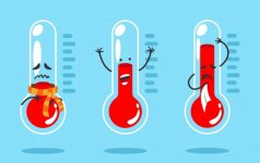Degtinė su pipirais ir kiti mitai, kaip gydyti gripą