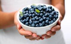 Mėlynių panna cotta mamos receptas