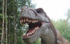 Karšti įspūdžiai iš lietuviškojo dinozaurų parko foto