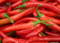 Kiek pavojinga valgyti aitriąsias paprikas?