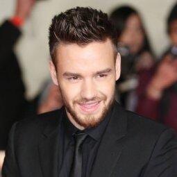 """""""One Direction"""" nario Liamo Payno nuotrauka muša populiarumo rekordus (FOTO)"""