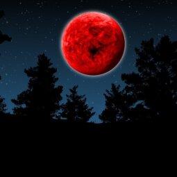Jei gimei po šiais 3 Zodiako ženklais, rytoj pasirodysiantis braškinis mėnulis tau bus lemtingas