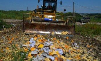 В России за полгода уничтожено 2500 тонн запрещенной к ввозу еды
