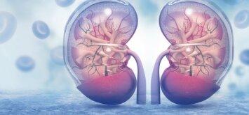 Apgaulingos inkstų ligos: kaip jas atpažinti?