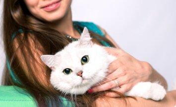 Tinkamiausia katės veislė pagal tavo Zodiako ženklą