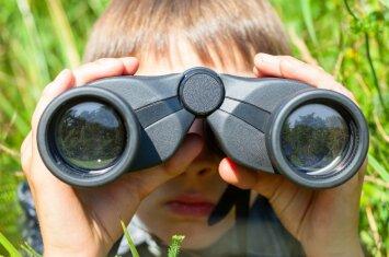 Kas geriau vaikui vasarą: atostogos pas močiutę ar išvyka į stovyklą?