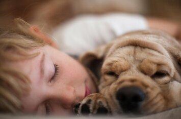 Gražu iki ašarų: vaiko ir šuns iš prieglaudos draugystė