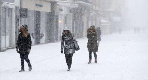 Sniegas Laisvės alėjoje