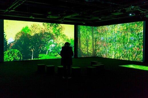 Вильнюс: выставка о Ван Гоге продлена до конца весны