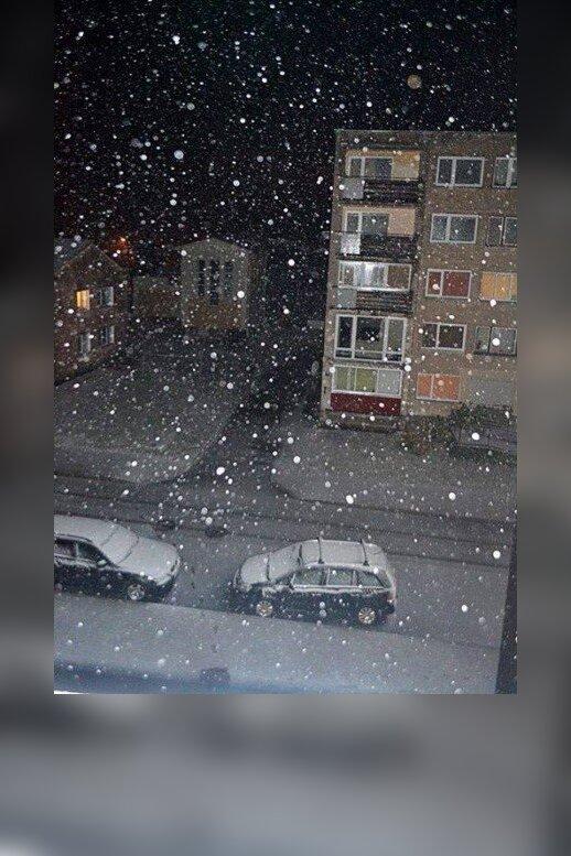 Lietuvoje iškrito pirmasis sniegas