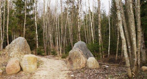 Akmenų rūžos takas Tytuvėnų reg. parke