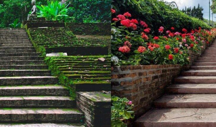 Kuriais laiptais pasirinktumėte lipti? Tai išduos, kas jus šiuo metu labiausiai neramina