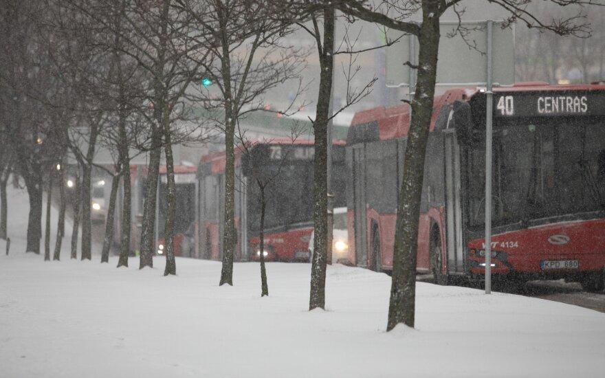 Жителей Вильнюса разочаровало решение руководства городского транспорта