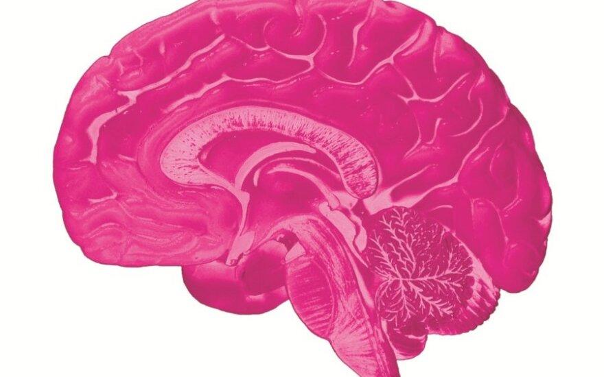 Лучшие продукты питания для здоровья мозга - RU.DELFI d8322d563de