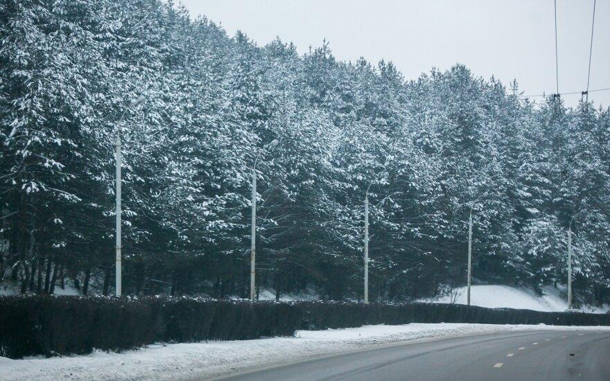Сразу после выходных погода в Литве изменится