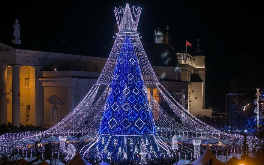 В Вильнюсе зажгли огни на главной елке: о ней будет говорить вся Европа