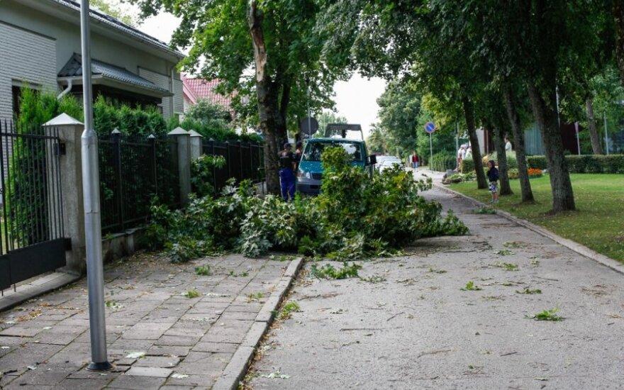 После ночной бури в Литве без электроснабжения остается 7000 потребителей