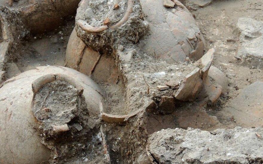 Найдено старейшее на Ближнем Востоке хранилище вина возрастом 3700 лет