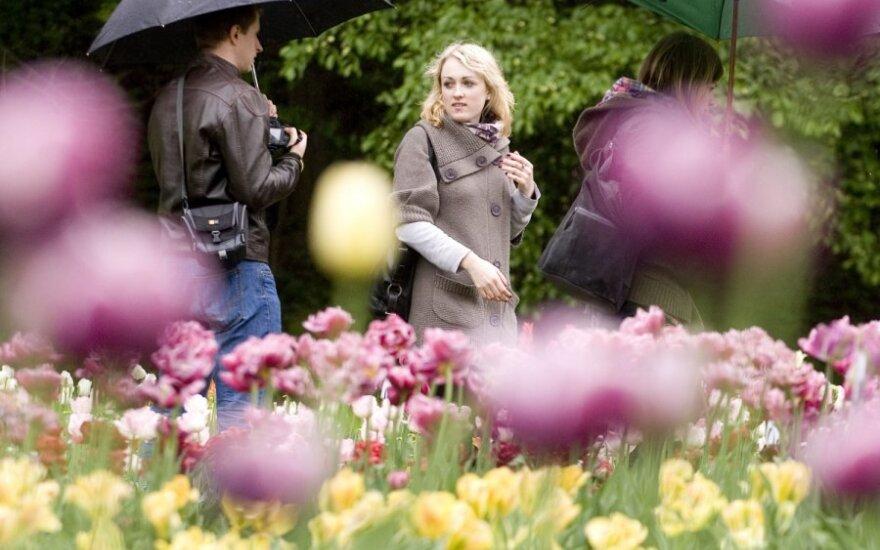 Ботанический сад приглашает полюбоваться тюльпанами