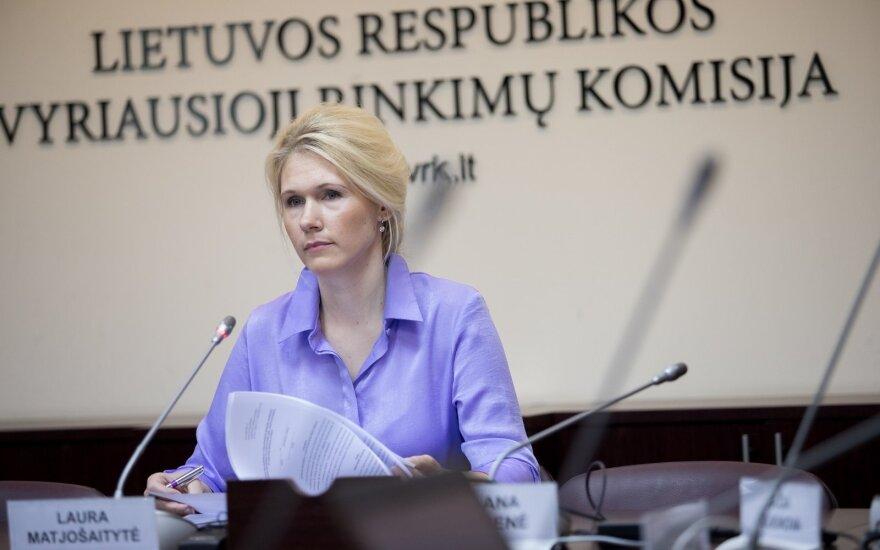 В Литве официально начинается кампания по выборам в муниципальные советы