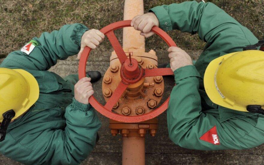Турция попросила Россию увеличить поставки газа