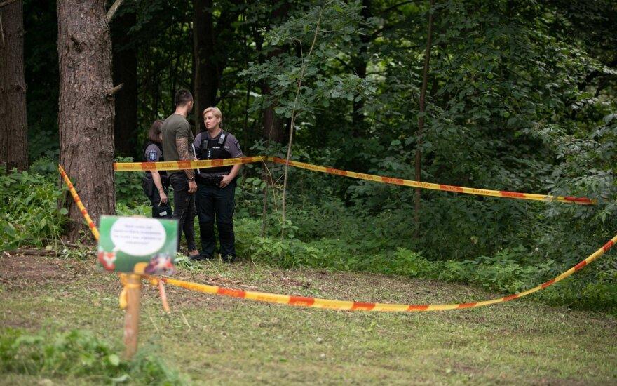 На ведущей к дому президента дороге в Вильнюсе звучали выстрелы