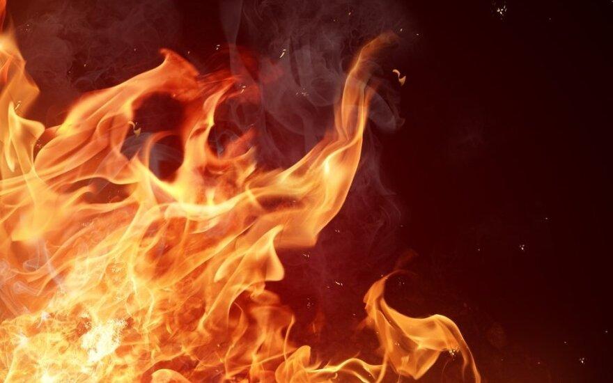 На пожарище обнаружено тело убитой женщины