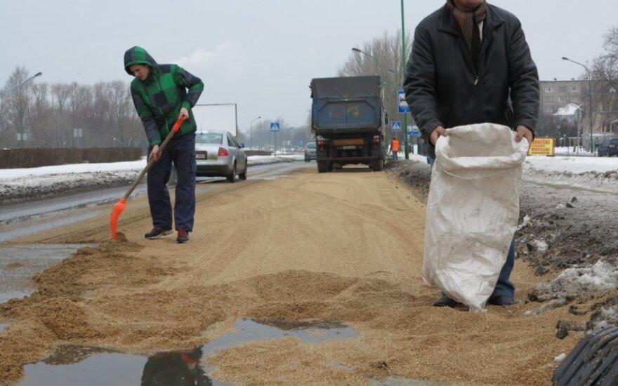 В Клайпеде на дороге оказались две тонны зерна
