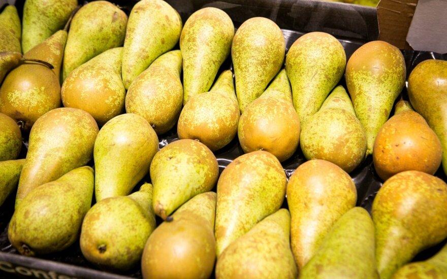 СМИ: российские импортеры завозят овощи и фрукты через Беларусь и Литву