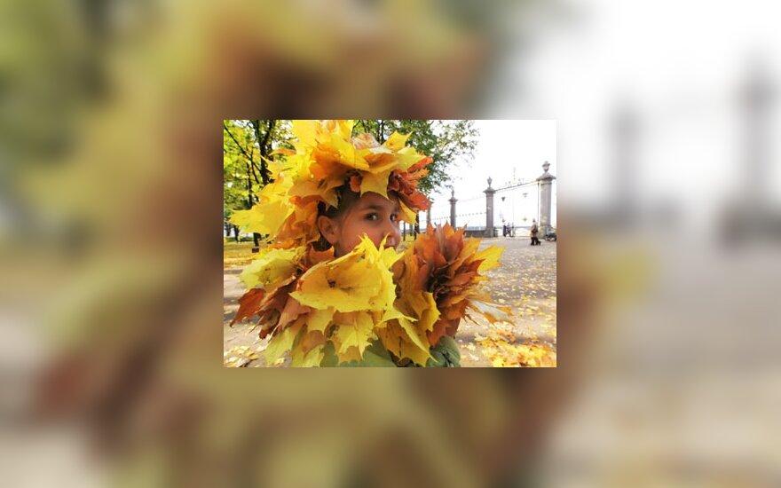 Sankt Peterburge mergaitė džiaugiasi spalvotais klevo lapais.