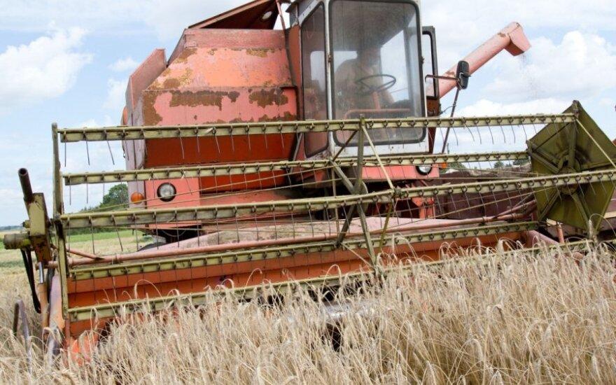 СМИ: фермерские хозяйства Литвы спасают от убытков выплаты ЕС