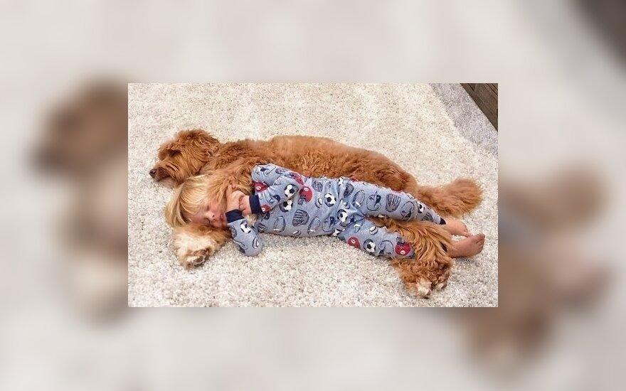 ФОТО: Дружба трехлетнего мальчика и пса прославила их в сети