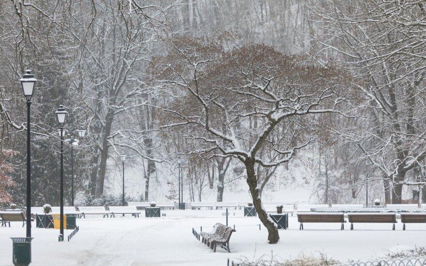 Прогноз: любителей зимней погоды ожидают приятные новости