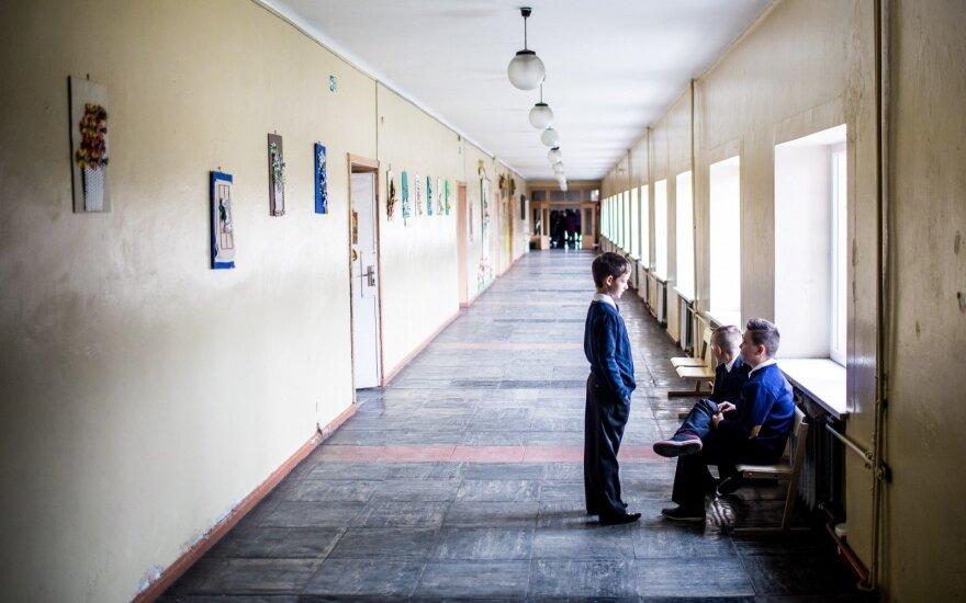 В пакруойской гимназии была избита девушка