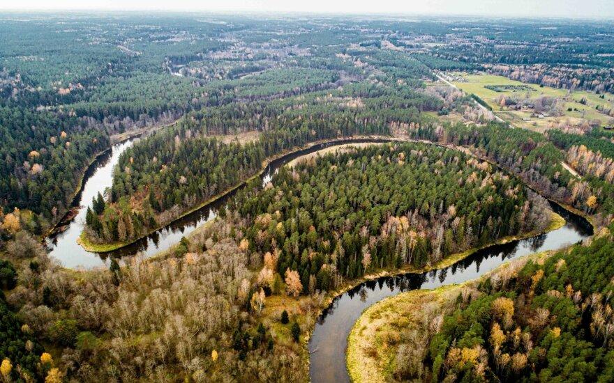 Погода в Литве: ожидается сильный ветер и дождь